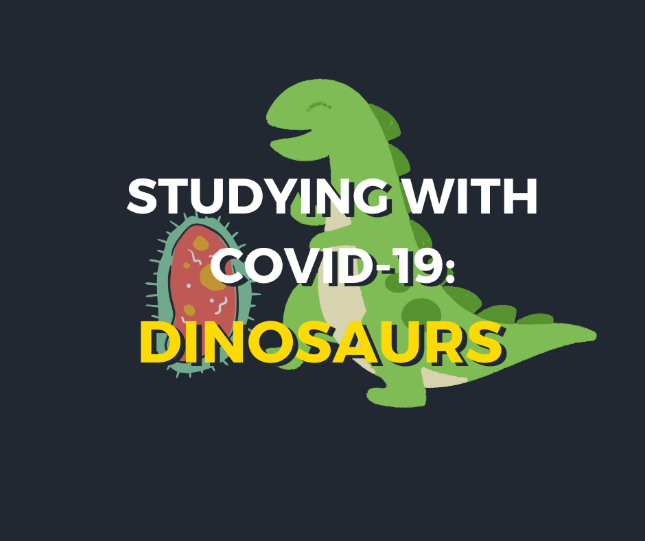 Studying with the dinosaurs